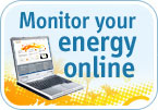 Monitor your energy online